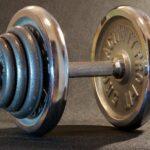regeneration mit Körpereigenen Kräften